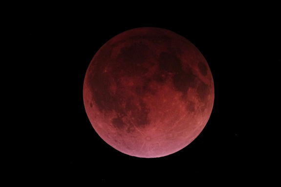 """Picture of a """"Blood Moon"""" lunar eclipse taken by . Victor C. Rogus F.R.A.S. April 15 2014. Used with permission"""